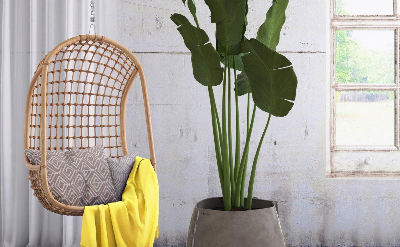 stitch-plant-pot-vbld-stitch-75.jpg
